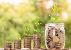 Investition in Pensionsfonds als Entgeltumwandlungsmodell